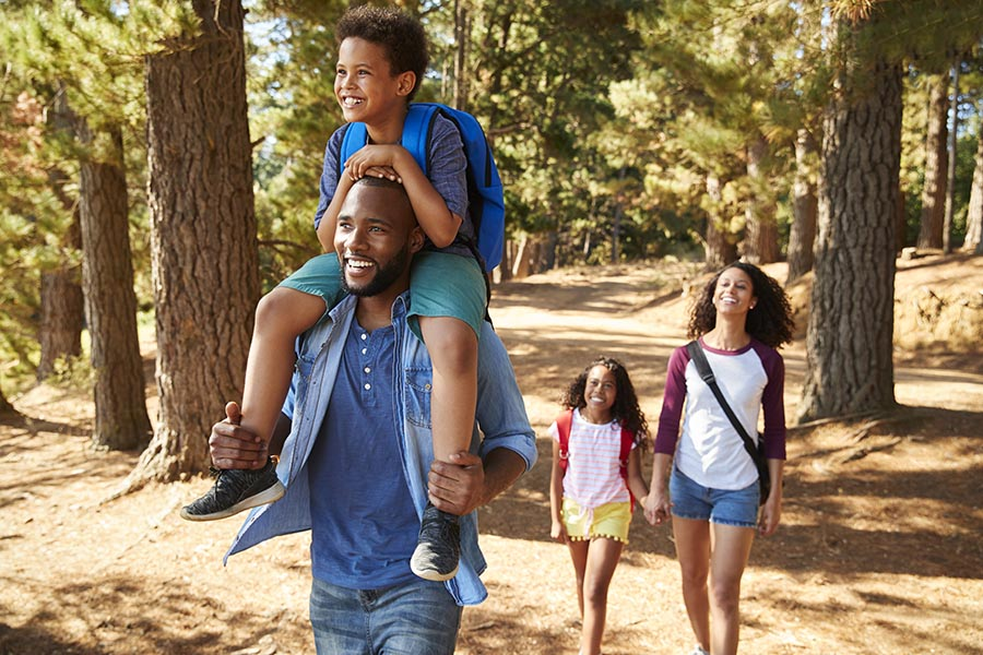 Personal Insurance - Mother, Father, Young Son and Daughter Stroll Through a Pine Forest, the Son Riding on His Dad's Shoulders and Daughter Holding Mom's Hand